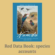 View and download data on recent (SABAP1) and historical distributions, protected status and more for Namibia's birds. See the movements of flamingos fitted with GPS satellite tracking devices under the 'Flight paths for wetland flagships' project.